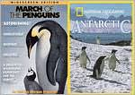 March of the Penguins  / Antarctic Wildlife Adventure