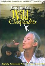 Nature: Jane Goodall's Wild Chimpanzees