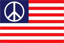Peace Flag - USA Poster
