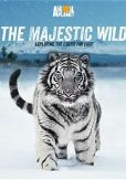 Video/DVD. Title: Majestic Wild