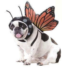 Butterfly Pet Costume: Medium
