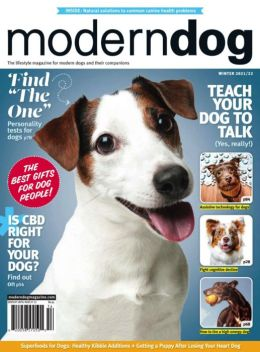 Modern Dog - One Year Subscription