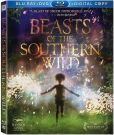 Video/DVD. Title: Beasts of the Southern Wild