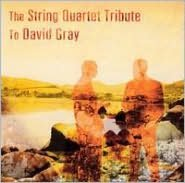 The String Quartet Tribute to David Gray
