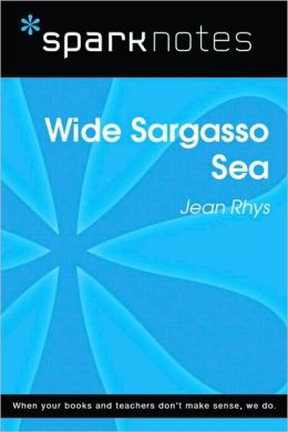 Wide Sargasso Sea (SparkNotes Literature Guide Series)