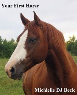 Your First Horse