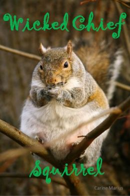 Wicked Chief Squirrel, a Short Story for 9 year old children