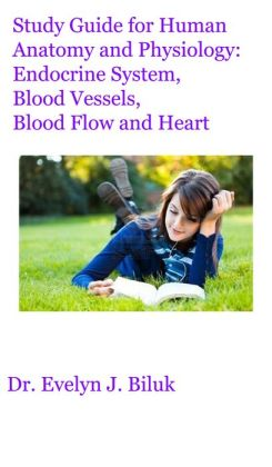 Anatomy And Physiology Blood Vessels Study Guide