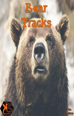 Bear Traxxx