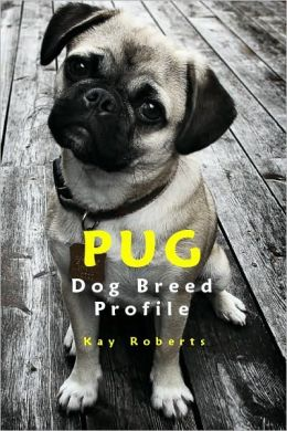 Pug Dog Breed Profile