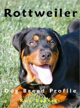 Rottweiler Dog Breed Profile
