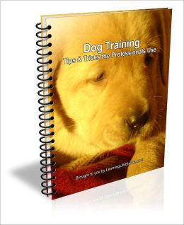 Dog Training: Tips & Tricks the Professionals Use