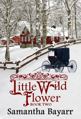 Little Wild Flower Book Two (Amish , Christian Romance)