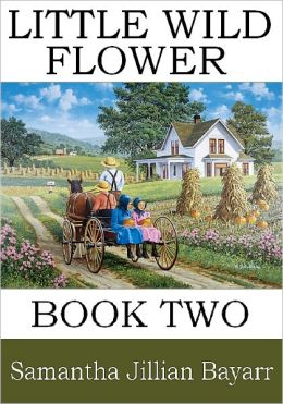 Little Wild Flower: Book Two (Amish, Christian Romance)