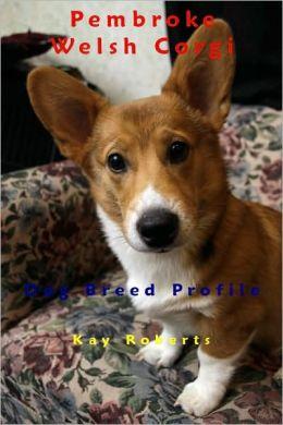 Pembroke Welsh Corgi Dog Breed Profile