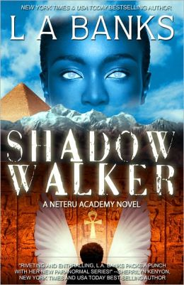 Shadow Walker (Neteru Academy Series #1)