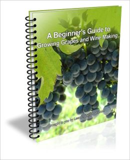A Beginner's Guide to Growing Grapes and Wine Making