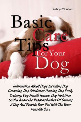 Best Dog Training Book For Teens