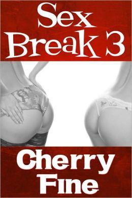 Sex Break 3 (Erotica/Erotic Romance)