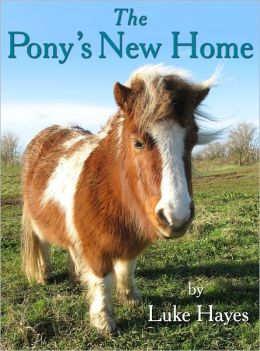 The Pony's New Home