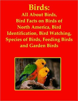 Birds: All About Birds, Bird Facts on Birds of North America, Bird Identification, Bird Watching, Species of Birds, Feeding Birds and Garden Birds