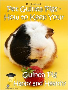 Pet Guinea Pigs - How to Keep Your Guinea Pig Happy and Healthy
