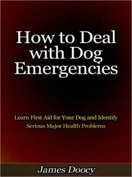 How to Deal with Dog Emergencies - Learn First Aid for Your Dog and Identify Serious Major Health Problems