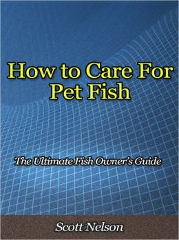 How to Care For Pet Fish - The Ultimate Fish Owner's Guide
