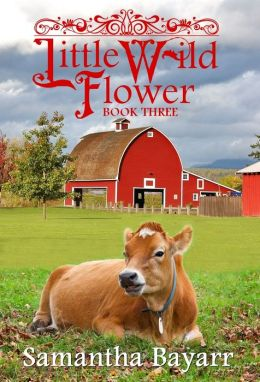 The Taming of a Wild Flower: Book Three (Amish, Christian Romance)