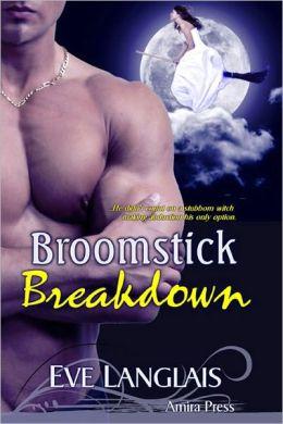 Broomstick Breakdown [Wolf Shifter Erotic Romance]