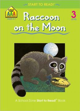 Raccoon on the Moon - Level 3