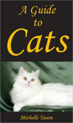 A Guide To Cats