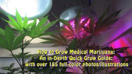 How to Grow Medical Marijuana: An in-Depth Quick Grow Guide: with over 155 full-color photos/illustrations