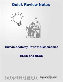 Human Anatomy Review & Mnemonics: Head and Neck