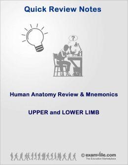 Human Anatomy Review & Mnemonics: Upper and Lower Limb