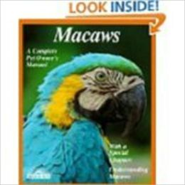 The Amazing and Majestic Macaw