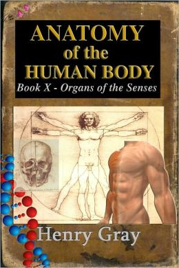 Anatomy of the Human Body - Book X The Organs of the Senses and the Common Integument