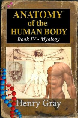 Anatomy of the Human Body Book IV - Myology