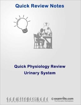 Quick Physiology Review: The Urinary System