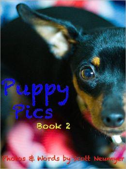 Puppy Pics: Book 2