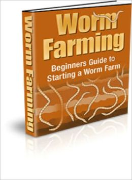 Worm Farming Beginners Guide To Starting A Worm Farm