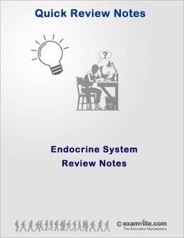 Endocrine System Quick Review Notes