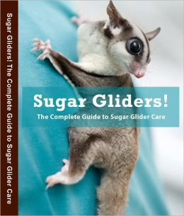 Sugar Gliders! The Complete Guide to Sugar Glider Care