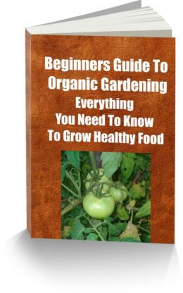 The Low Down On The Hoe Down Of The Beginners Guide to Organic Gardening