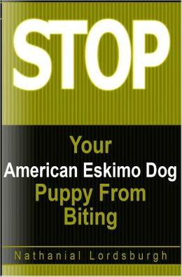 Keep Your American Eskimo Dog From Biting