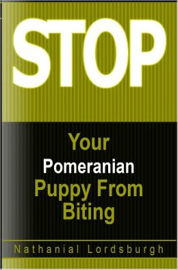 Keep Your Pomeranian From Biting