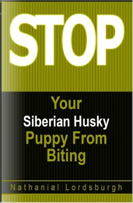 Keep Your Siberian Husky From Biting