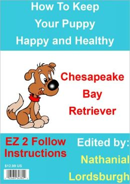 How To Keep Your Chesapeake Bay Retriever Happy and Healthy