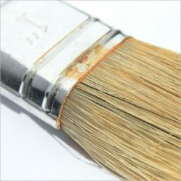 Interior painting ideas, How to Guide for Interior painting.