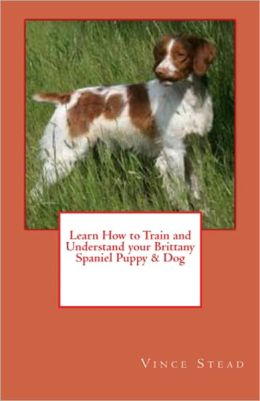 Learn How to Train and Understand your Brittany Spaniel Puppy & Dog